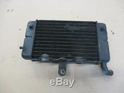 Radiateur d'eau gauche pour Honda 750 Africa twin XRV RD04